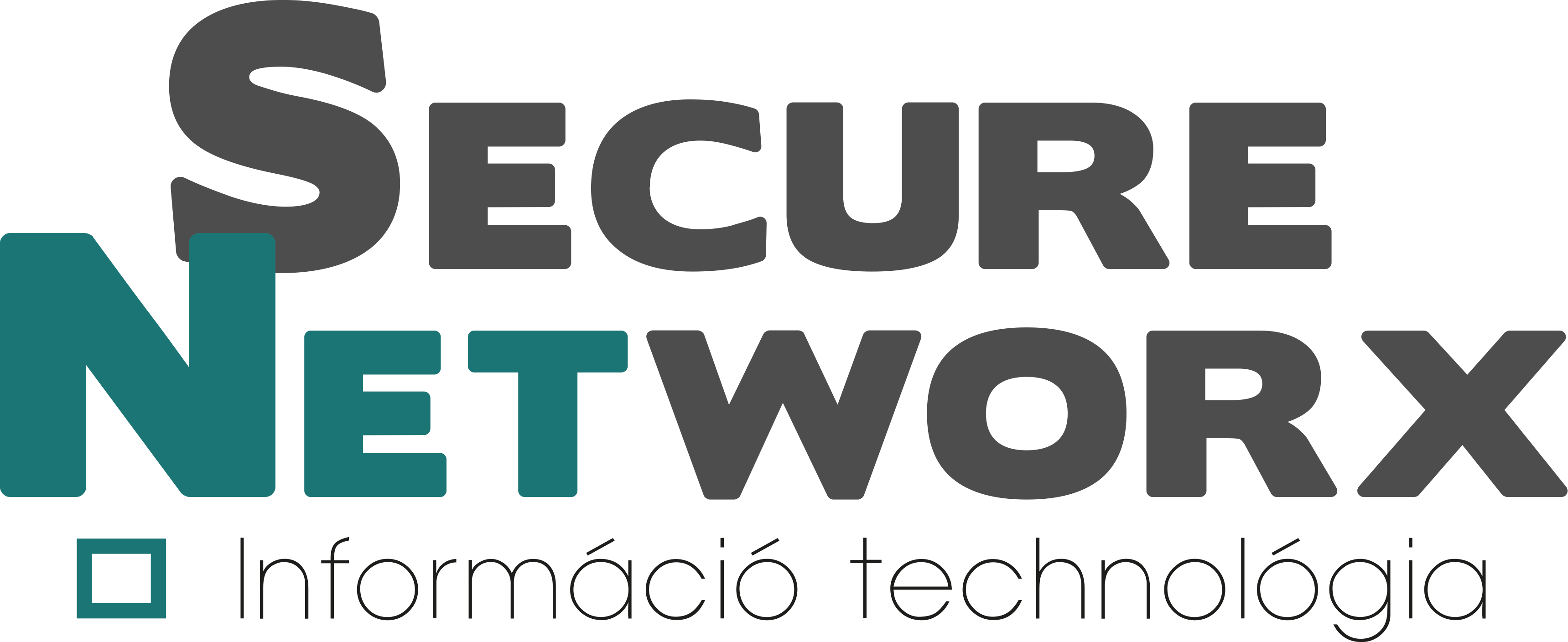 Secure Networx for Faraday Bags